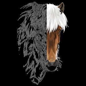 Unsere Pferde-Zeichnung