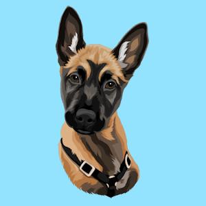 Dein Hundeportrait