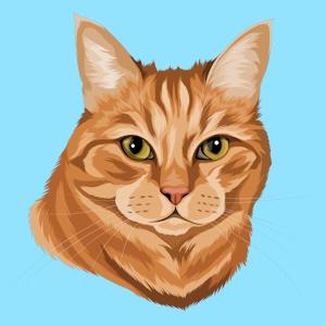 Dein Katzenportrait