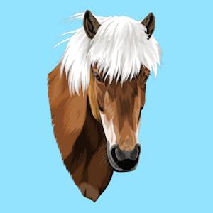Dein Pferdeportrait