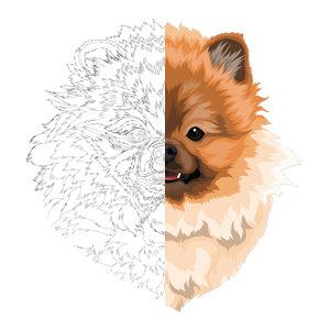 Unsere Haustier-Zeichnung
