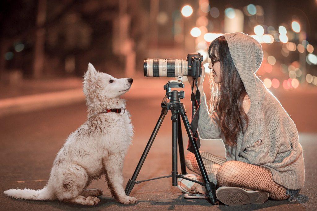Tag des Haustierfotos