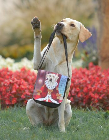 Seitentasche mit einem Hund bedruckt