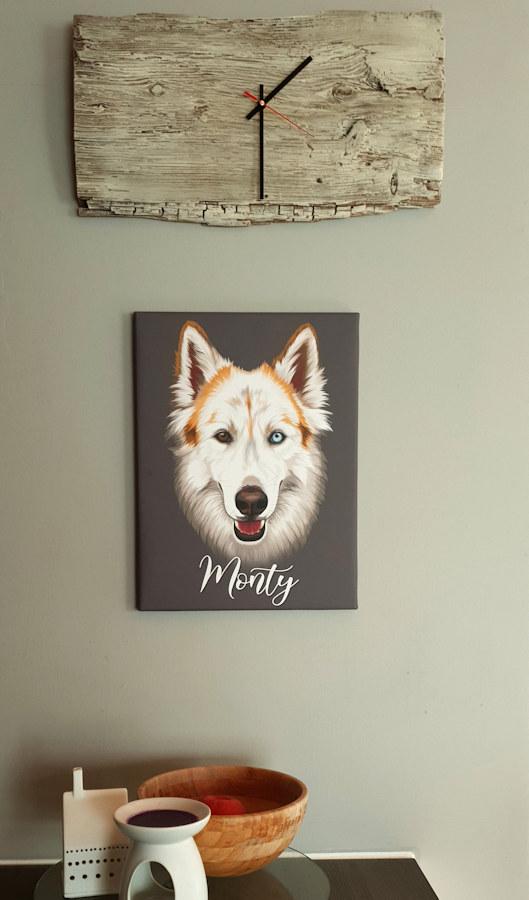 Siberian Husky Zeichnung