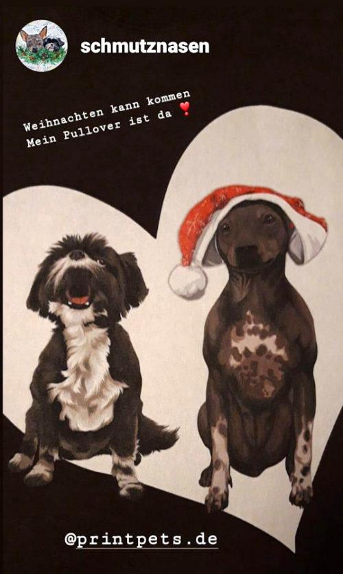 Weihnachts-Sweater mit Miko & Sassy
