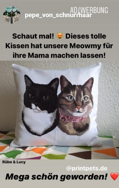 Pet Printed Erfahrungen