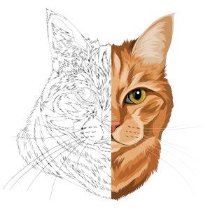 Unsere Katzen-Zeichnung