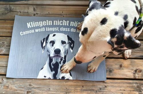 fussmatte_klingeln3
