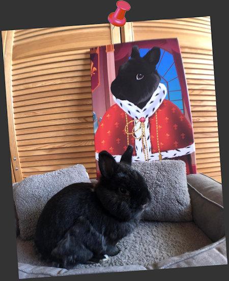 Professor Pericles hat bereits seine personalisierte Royal Leinwand 😍