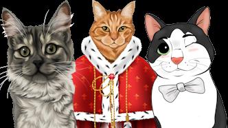 Katzen personalisiert