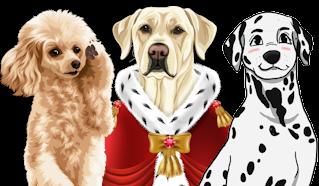 Hunde personalisiert