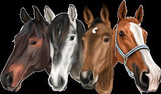Pferde personalisiert